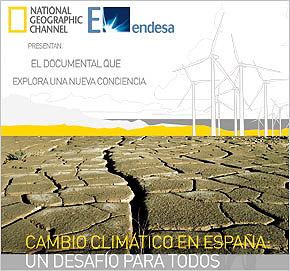 20090122173221-endesa-ng290x271.jpg