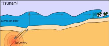 20090930120724-350px-esquema-de-un-tsunami.png