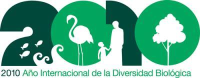 20100127124432-iyb2010-logo-spanish-sm.jpg