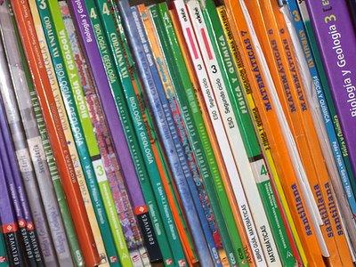 20100711122426-librosdetexto.jpg
