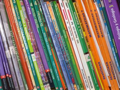 20110531172024-libros-de-texto.jpg