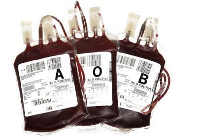 20120302111910-sangue.jpg