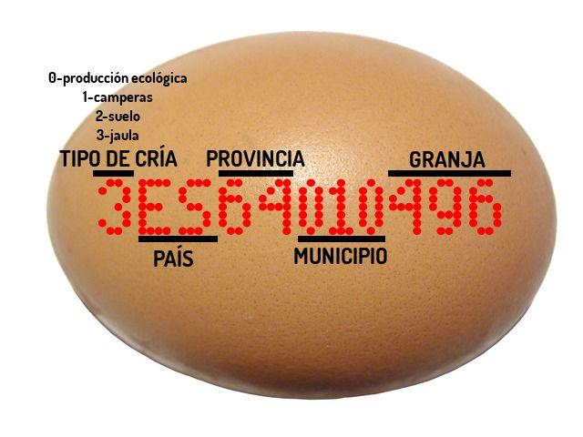 20130504083321-huevo-cuidate-sano.jpg
