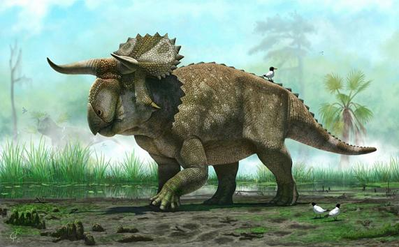 20130718201359-nasutoceratops-titusi-splash-.jpg