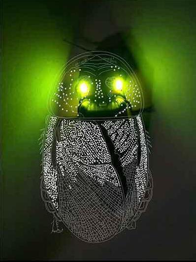 20130721124143-lightningbug1.jpg