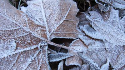20131128182707-baleares-registrara-invierno-precipitaciones-montanas-tinima20121220-1104-5.jpg