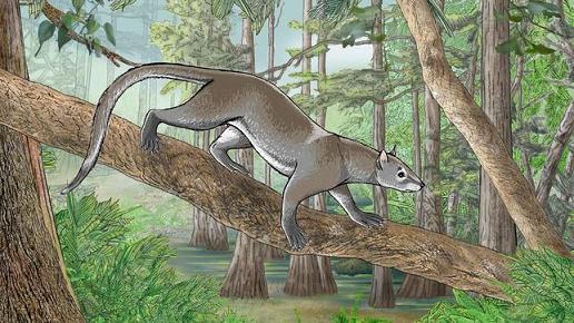 20140107105613-antepasado-leones-osos-tigres-.jpg