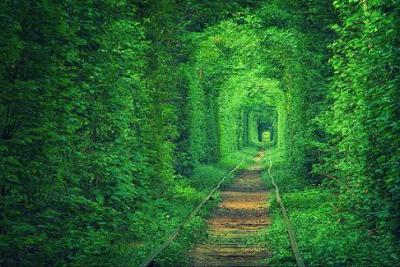 20140331192524-tunel-del-amor.jpg