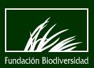 20081215195104-icobiodiversidad.jpg
