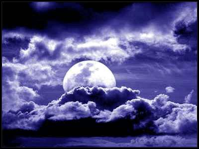 20090802133954-noche1.jpg