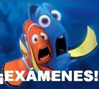 20100630084417-examenes2.jpg