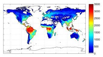 20100709114904-vegetacion-dioxido-carbono.jpg