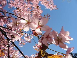20110317191359-vacaciones-primavera2.jpg