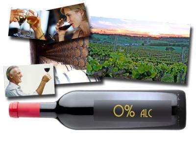 20110718095027-vino-sen-alcohol.jpg