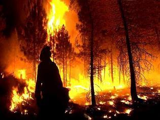 20110820123518-incendio-forestal.jpg
