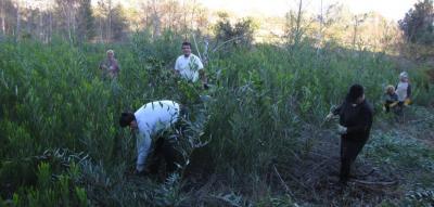 20121101085615-actividades-2012.anb22s-0942.a.jpg