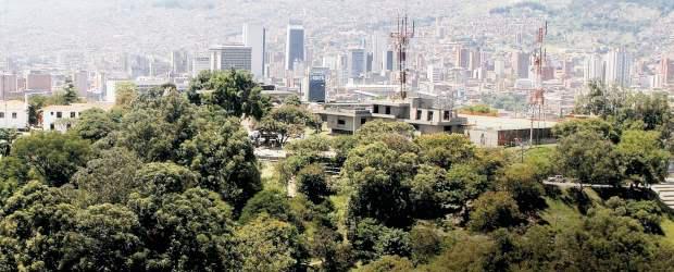 20130120210101-arbores-e-cidades.jpg