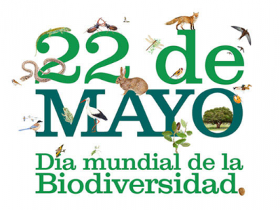 20140522131320-dia-biodiversidad.png