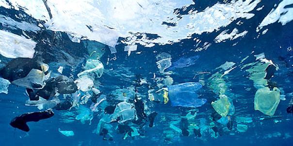 20150102154752-plastic-bag.jpg