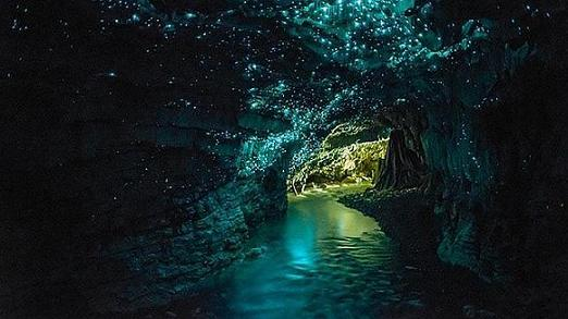 20150516090418-glowworms-cave-neva-zelanda-.jpg