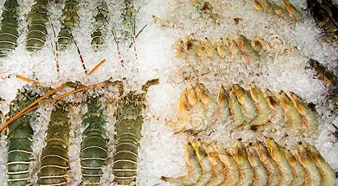 20151012091757-lagosta-e-gambas.jpg