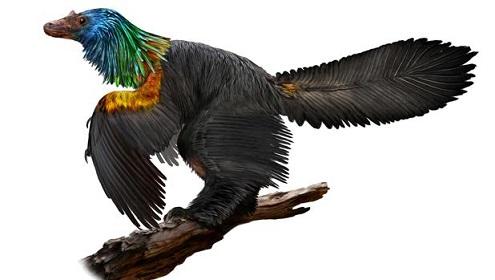 20180117075143-dinosaurioiridiscente-kv4f-620x349-abc.jpg