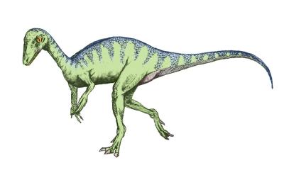 20180324163433-eoraptor-sketch5.png